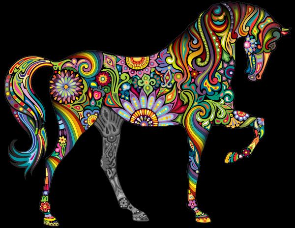 למצוא 3 סוסים הכי טובים