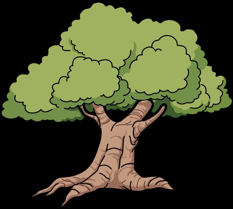 כמה עצי חיפוש יייחודיים ניתן לבנות ששומרים n...1 מספרים